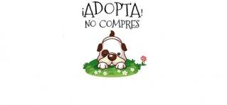 Información sobre la adopción